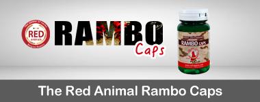 Rambo caps para gallos